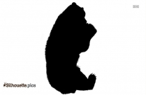 Bear Icon Silhouette