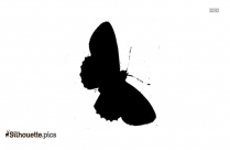 Beautiful Butterfly Drawings Silhouette Picture