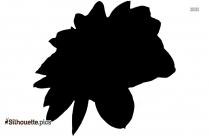 Camellia Flower Silhouette Free Vector Art