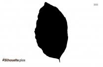 Cartoon Tree Leaf Silhouette