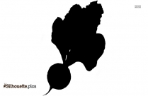 Beetroot Silhouette Picture