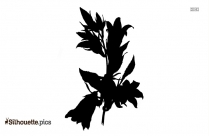 Lilac Flower Silhouette Image And Vector