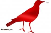 Secretary Bird Silhouette Clip Art