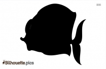 Southern Right Whale Silhouette