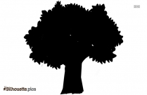 Forest Tree Silhouette Background