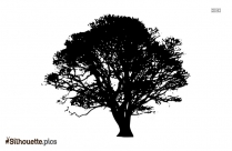Tree Drawing Silhouette Free Vector Clipart