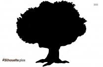 Apple Tree Drawing Silhouette Clip Art