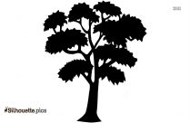 Tree Sketch Silhouette Image