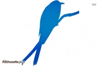 Seagull Bird Silhouette