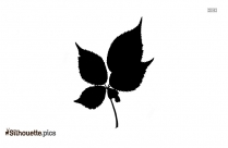 Birch Leaf Silhouette Clipart Image