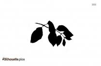 Birch Leaf Silhouette Free Vector Art