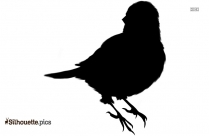 Bird Family Flying Pictures Clip Art Silhouette