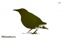 Oklahoma Bird Cartoon Bird Silhouette Image