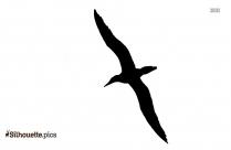 Flying Macaw Bird Silhouette