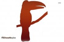 Black Parrot Silhouette Image