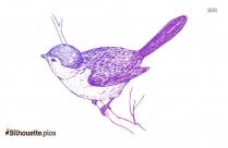 Frigate Bird Clipart, Silhouette