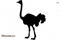 Ostrich Silhouette Picture