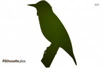 Bird Crossing Silhouette