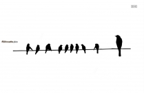 Birds On Electrical Wires Silhouette Background