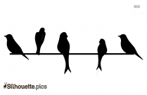 Parrot Picture Silhouette