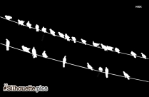 Images Of Birds Flying Silhouette
