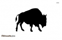 Cow Drawing Silhouette Vector And Graphics