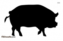 Boar Wild Pig Silhouette