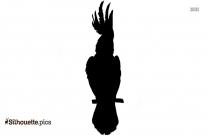 Free Cassowary Silhouette