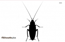 Black And White Cockroach Silhouette