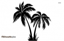 Palm Tree Background Silhouette