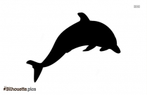 Beautiful Dolphin Silhouette Image And Vector