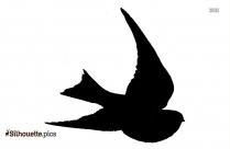 Endangered Birds Silhouette Illustration