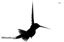 Crow Silhouette Picture