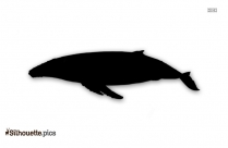 Humpback Whales Silhouette