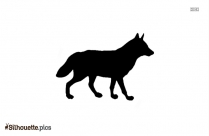 Black And White Indian Hyena Silhouette