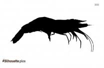 Shrimp Outline Silhouette Image