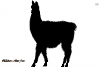 Black And White Llama Silhouette