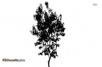 Tree Clipart Logo Silhouette For Download