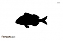 Free Porgy Fish Silhouette