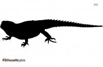 House Lizard Image Silhouette