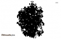 Hibiscus Leaves Clip Art Silhouette