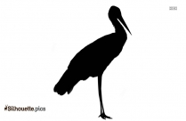 Cartoon Birds Silhouette