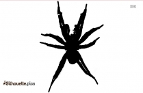 Black And White Trapdoor Spider Silhouette
