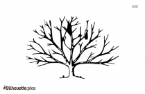 Black And White Tree Without Leaves Silhouette