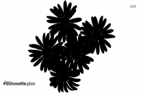 Tropical Plant Silhouette Drawing
