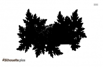 Winter Leaves Silhouette Image