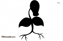 Black Bellsprout Silhouette Image