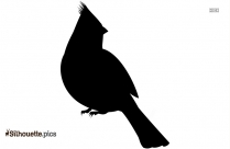 Cute Baby Chick Face Silhouette
