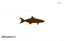Fish Border Silhouette Image