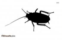 Bug Silhouette Image